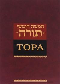 """Сафронов Давид """"Тора"""", книга из серии: Иудаизм"""